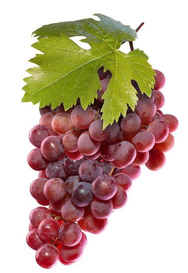 grapes2020