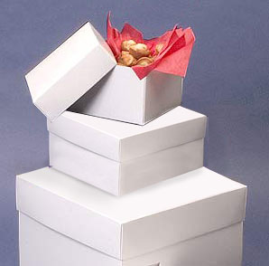 White 2 Piece Premium Cake Bakery Boxes