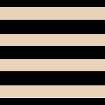 Black Gold Stripe