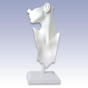 1229 - WHITE HEAD FORM