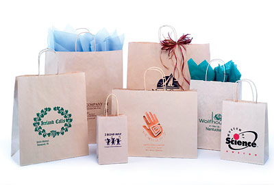 SandKraft Color Paper Bags w/Twisted Paper Handles