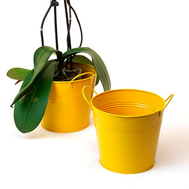 6 1/2in. Goldenrod Painted Pail w/Side Handles