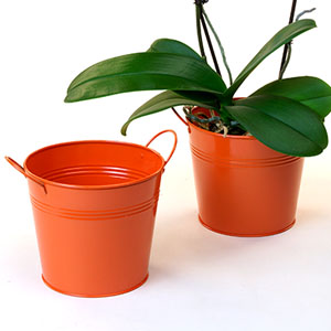 6 1/2in. Orange Painted Pail w/Side Handles