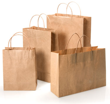 Brown Kraft Paper Bags with Twisted Paper Handle