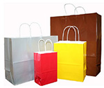 Nifty50 Colored Glossy Paper Bags w/ Twisted Paper Handle