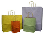 Nifty50 Varnished Pinstripe Tinted Paper Bags w/ Twisted Paper Handle