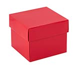 MB-2P6 Red Set-up Box