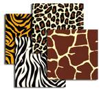 Animal Hides  Tissue