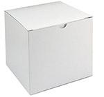 6x6x6 White Alligator Gift Box