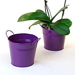 6 1/2in. Purple Painted Pail w/Side Handles