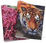 4 Color Digitally Custom Printed Tissue  (low minimums)
