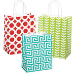 Geo Designed Paper Shopping Bags