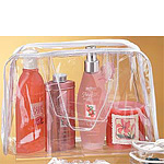 Clear Vinyl Security Purse w/Sewn Seams and PVC Handles