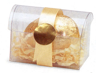 Clear Acetate Treasure Chest